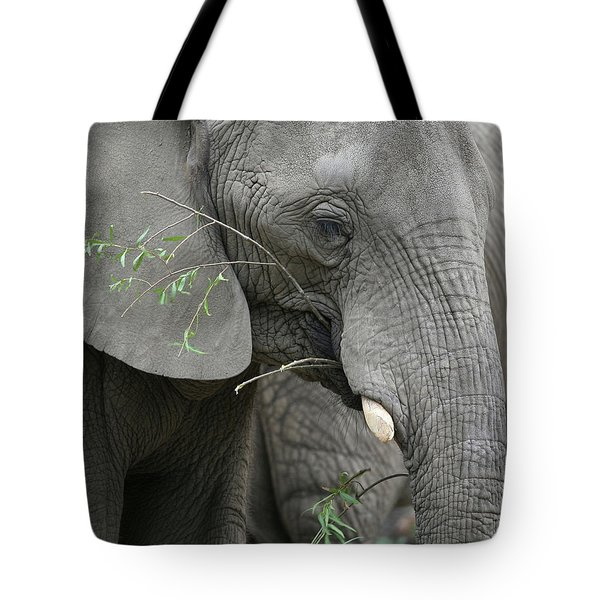 Elly At Lunch Tote Bag by Karol Livote