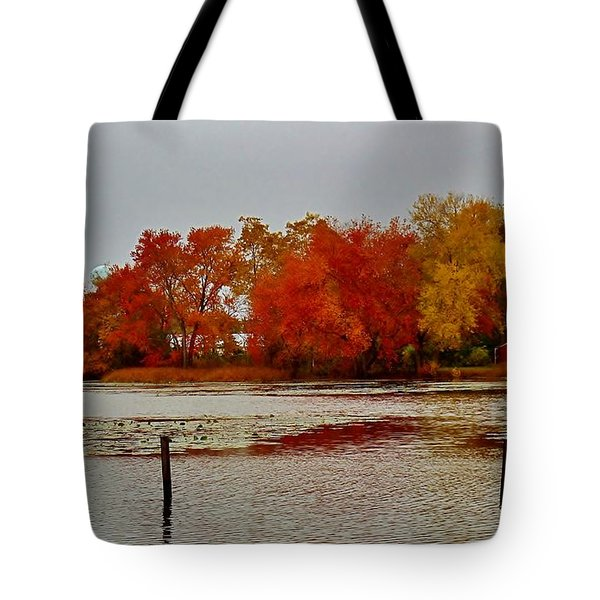 Tote Bag featuring the photograph Elmer Lake In Autumn by Ed Sweeney