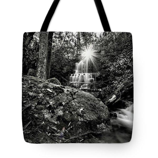 Elora Falls In Black And White Tote Bag