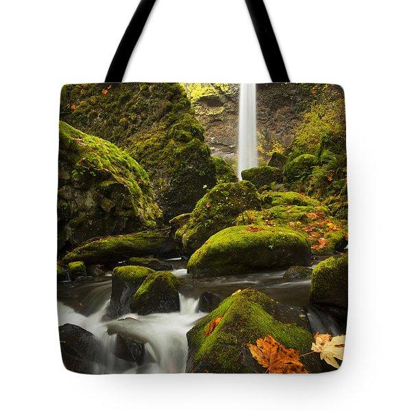 Elowah Autumn Tote Bag by Mike  Dawson