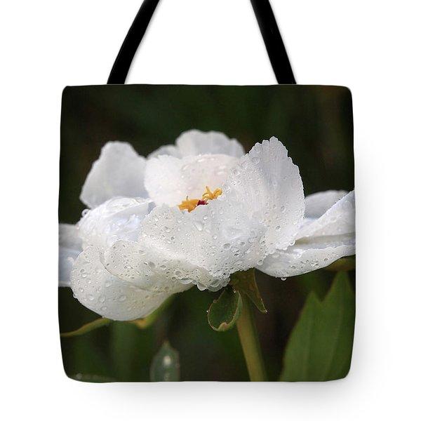 Embracing The Rain - White Tree Peony Tote Bag by Gill Billington