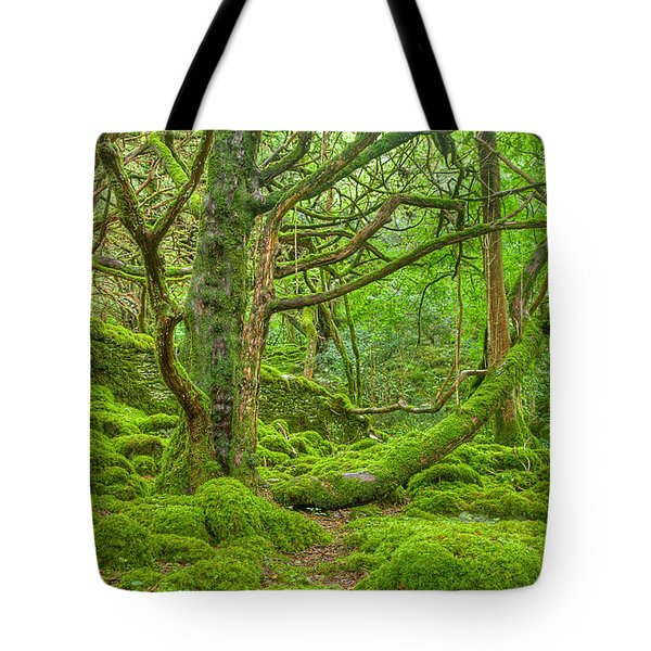 Emerald Forest Tote Bag by Nicolas Raymond