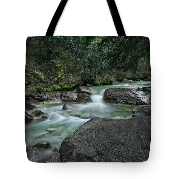 Tote Bag featuring the photograph Emerald Forest by Tim Reaves