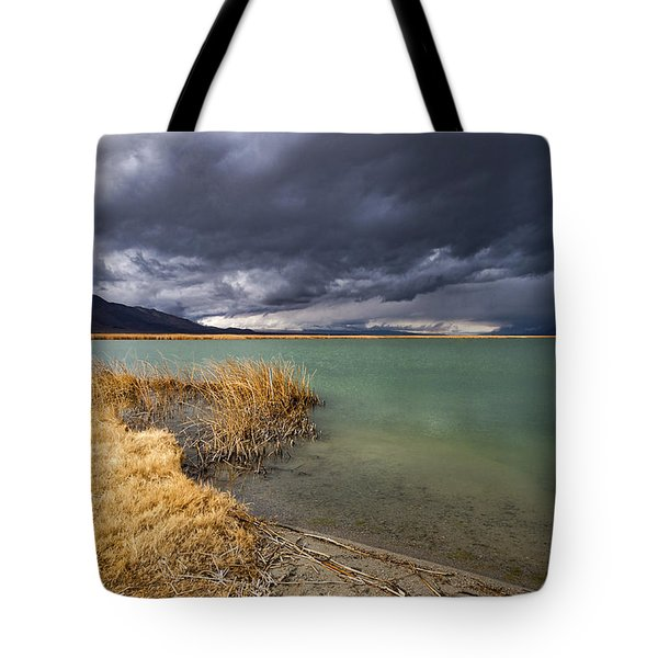 Emerald Green Storm Tote Bag