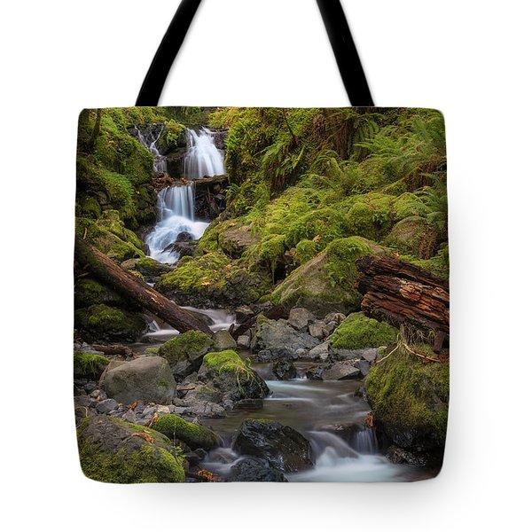 Emerald In Autumn Tote Bag