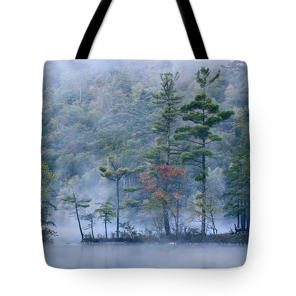 Tote Bag featuring the photograph Emerald Lake In Fog Emerald Lake State by Tim Fitzharris
