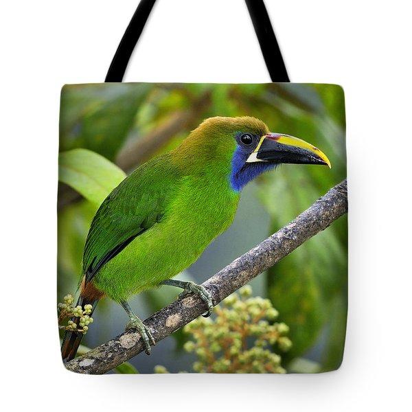 Emerald Toucanet Tote Bag