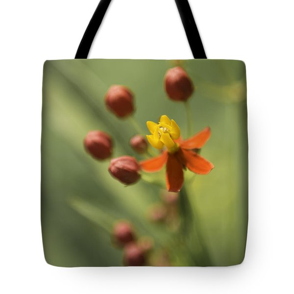 Emergence - Asclepias Curassavica - Butterfly Milkweed - South Carolina Botanical Gardens Tote Bag by Johan Hakansson