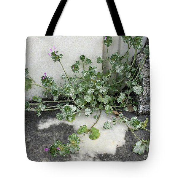 Tote Bag featuring the painting Emergence by Kim Nelson