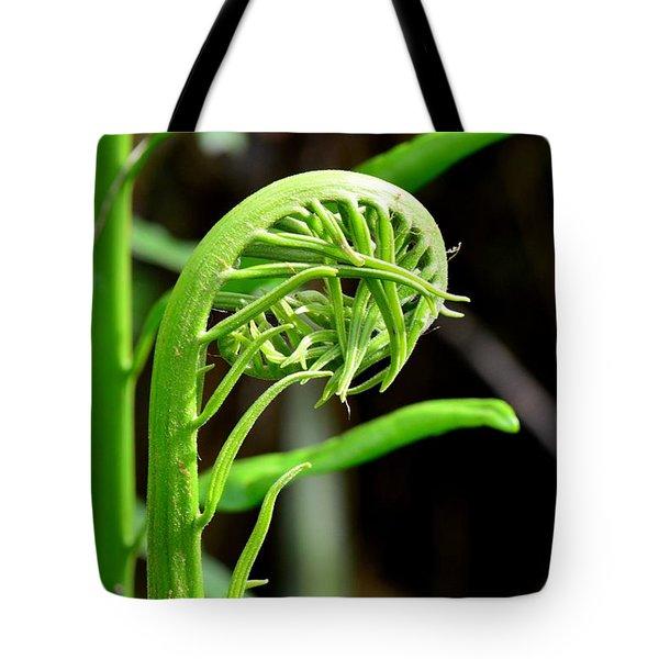 Emerging Fern - Everglades National Park Tote Bag
