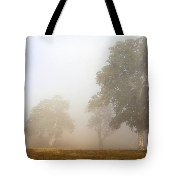 Emerging From The Fog Tote Bag by Mike  Dawson