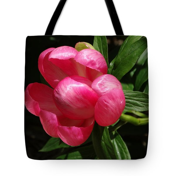 Emerging Peony Bloom Tote Bag by Rebecca Overton