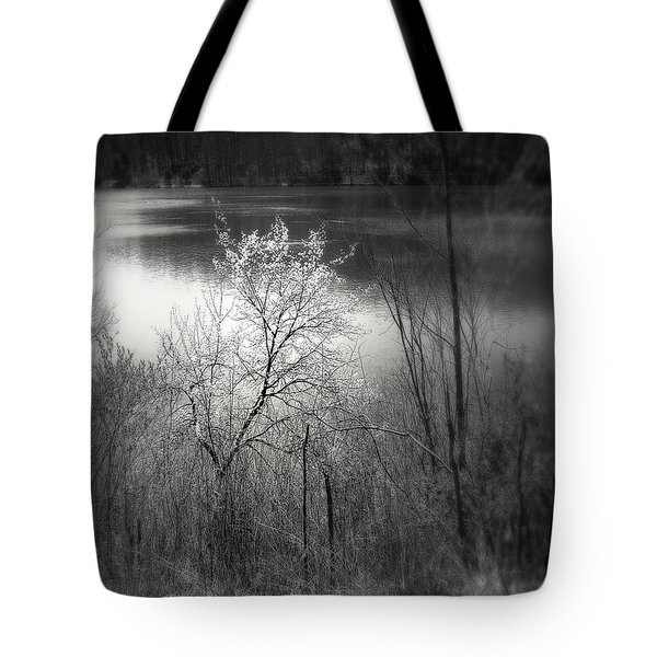 Tote Bag featuring the photograph Emlenton by EDi by Darlene