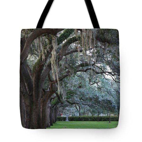 Emmet Park In Savannah Tote Bag