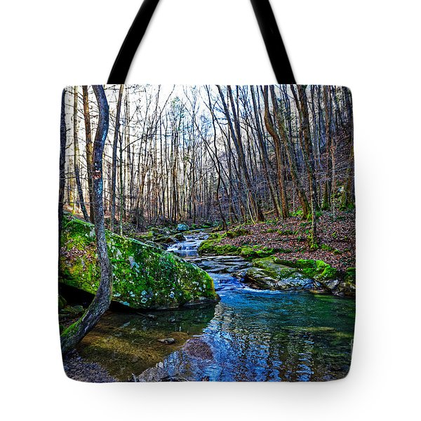 Emory Gap Branch Tote Bag