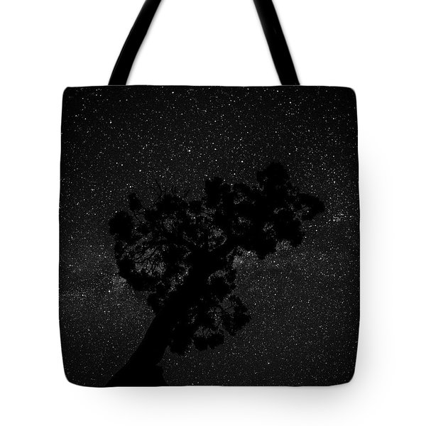 Tote Bag featuring the photograph Empty Night Tree by T Brian Jones