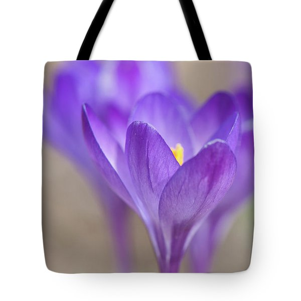 En Attendant Le Printemps Tote Bag