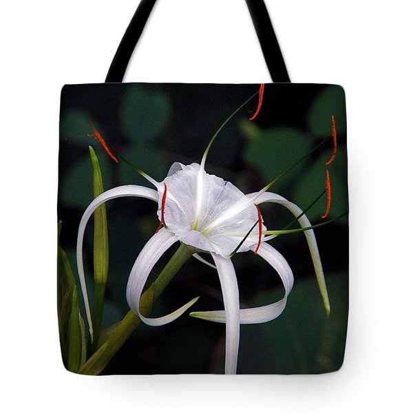 En Pointe Tote Bag