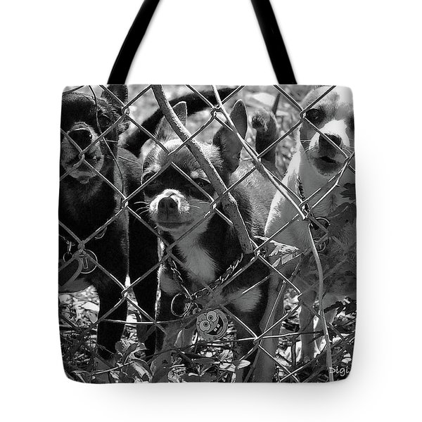 Encarcelados Chihuahuas Tote Bag by DigiArt Diaries by Vicky B Fuller