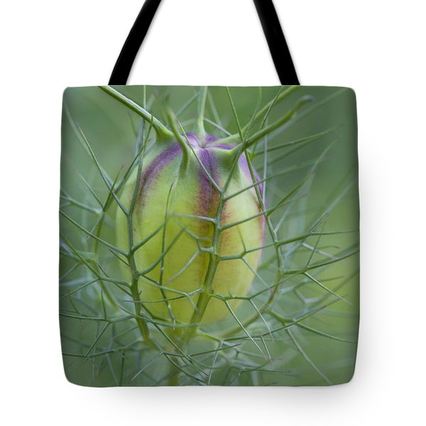 Encased Tote Bag