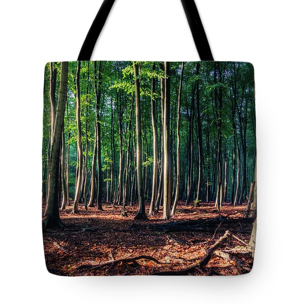 Tote Bag featuring the photograph Enchanted Forest by Dmytro Korol