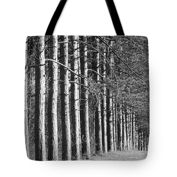 Enchanted Forest Tote Bag by Luke Moore