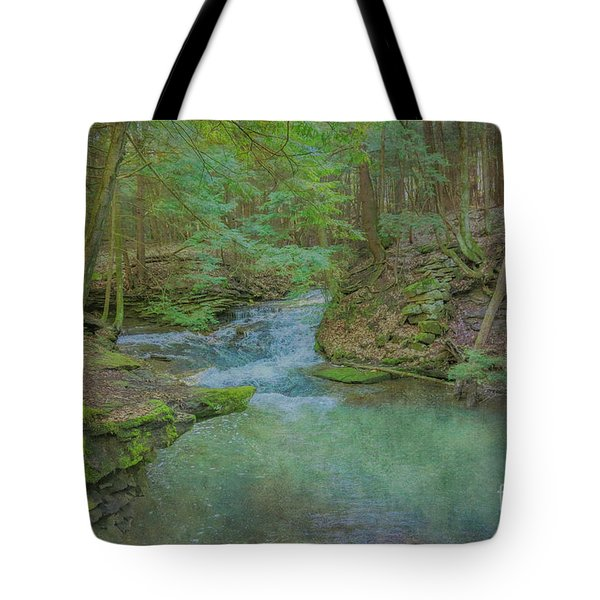 Tote Bag featuring the digital art Enchanted Forest One by Randy Steele
