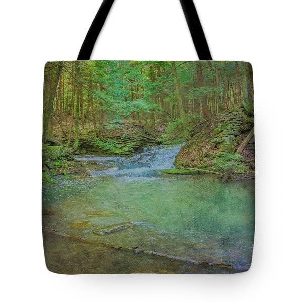 Tote Bag featuring the digital art Enchanted Forest Two by Randy Steele