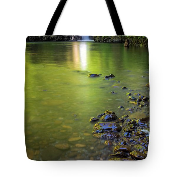 Enchanted Gorge Reflection Tote Bag by David Gn