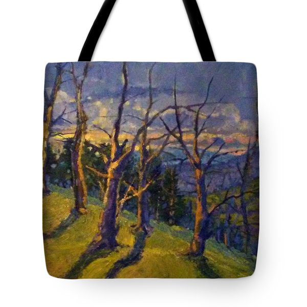 End Of Autumn Sunset Tote Bag