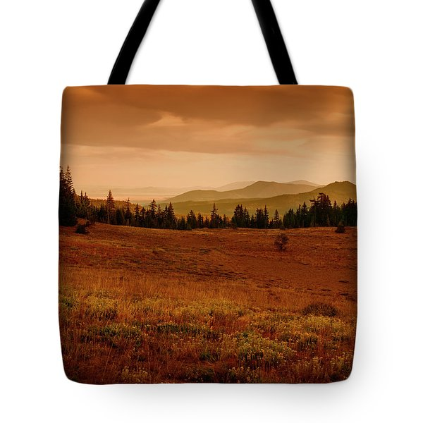 Tote Bag featuring the photograph End Of Day by Frank Wilson