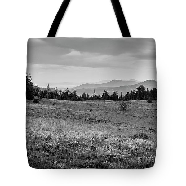 Tote Bag featuring the photograph End Of Day In B W by Frank Wilson