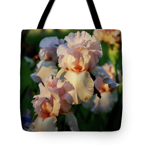End Of Day Pink Irises 6702 H_2 Tote Bag