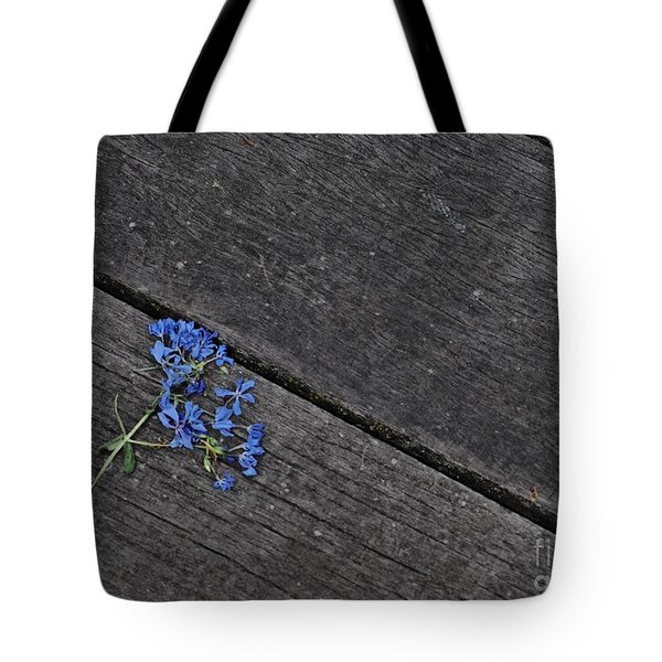 End Of Days Tote Bag by Tim Good