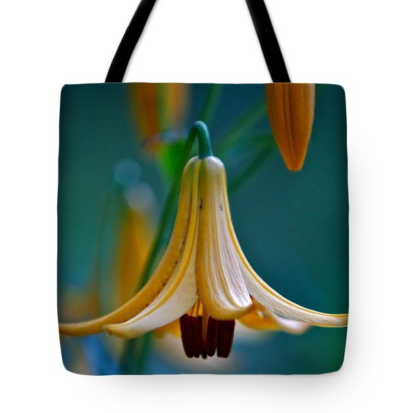 End Of June Tote Bag by Nathan Larson