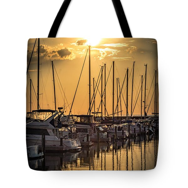 End Of Season Tote Bag by James  Meyer