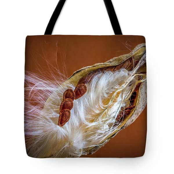Tote Bag featuring the photograph End Of Season by Ronald Santini