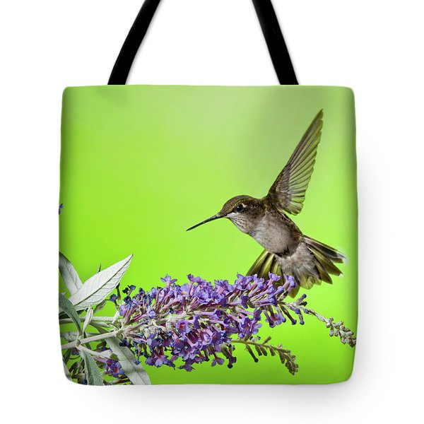 End Of Summer Hummingbird 2016 Tote Bag by Lara Ellis