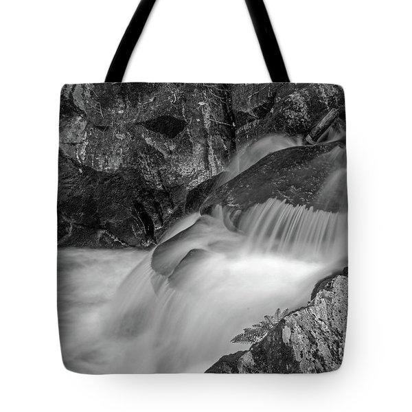Enders Falls 2 Tote Bag