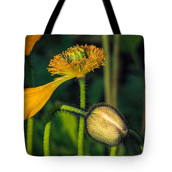 Endings And Beginnings Tote Bag