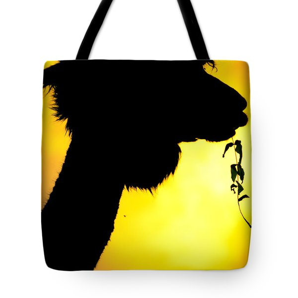 Endless Alpaca Tote Bag by TC Morgan