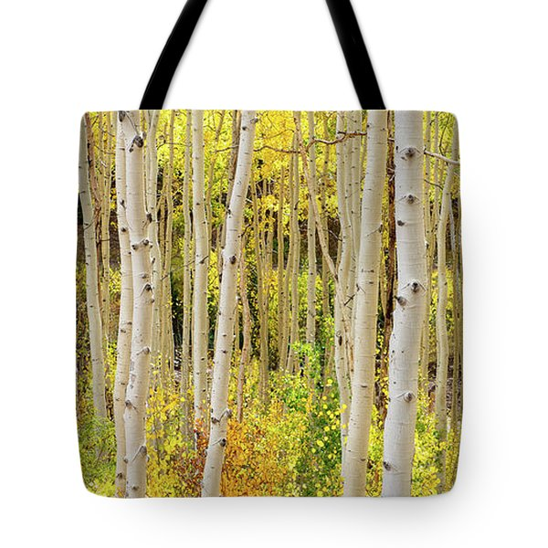 Endless Aspens Point 44 Tote Bag