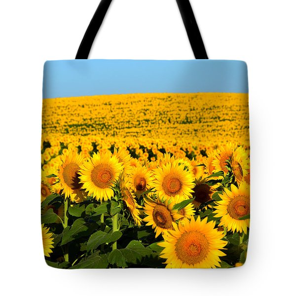 Endless Sunflowers Tote Bag by Catherine Sherman