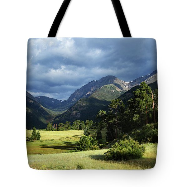 Endovalley Aftenoon Tote Bag
