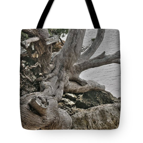 Tote Bag featuring the photograph Endure by Rebecca Hiatt