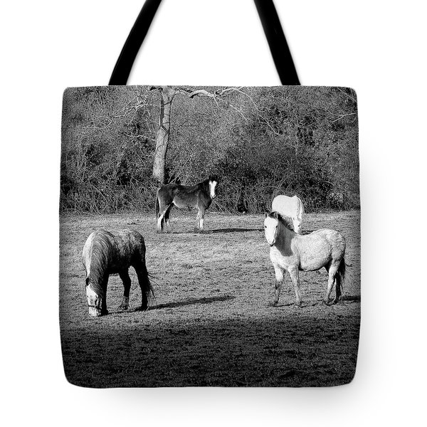 English Horses Tote Bag