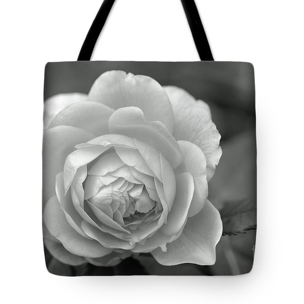 English Rose In Black And White Tote Bag