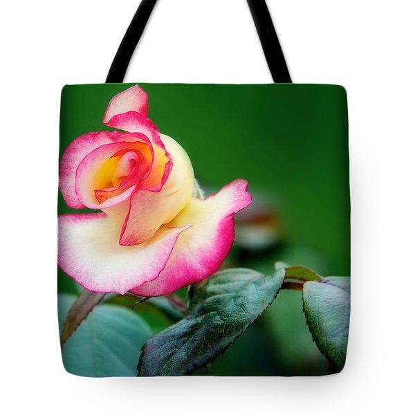 English Rose Tote Bag by Lisa Knechtel