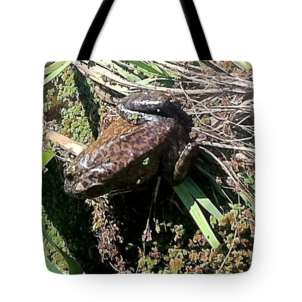 Enjoying Sunshine Tote Bag