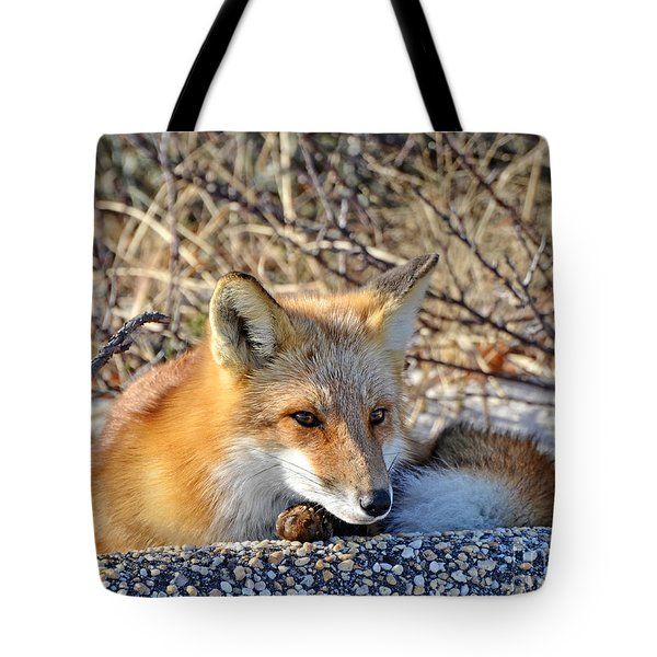 Enjoying The Sun Tote Bag by Sami Martin